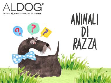 Aldog blog animali di razza anteprima-01