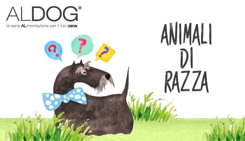 Aldog blog animali di razza principale-01