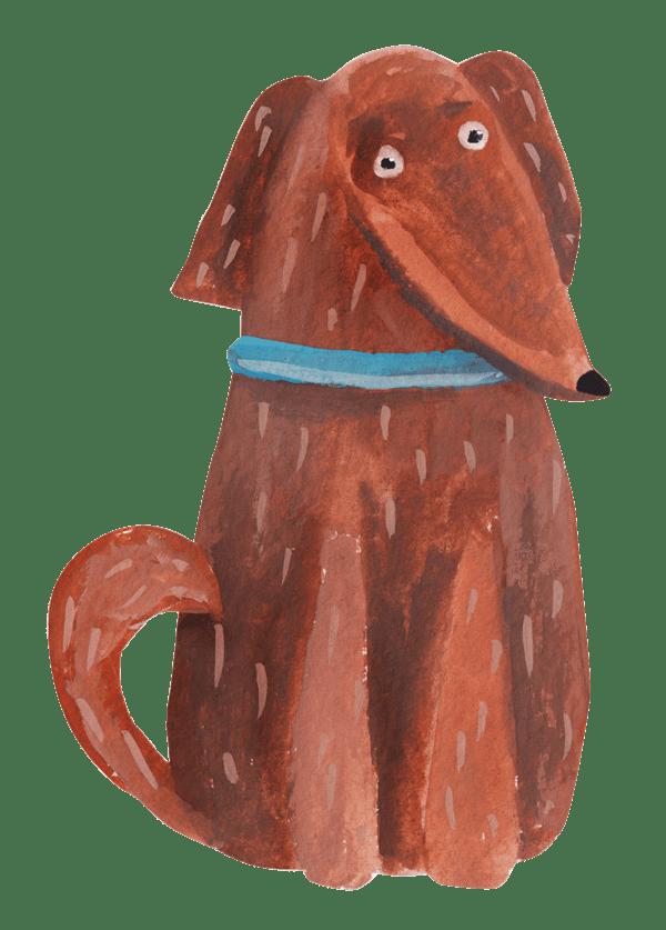 alimenti-migliori-cani