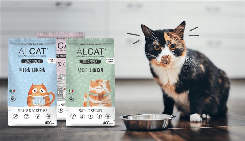 alimentazione-sana-gatto principale