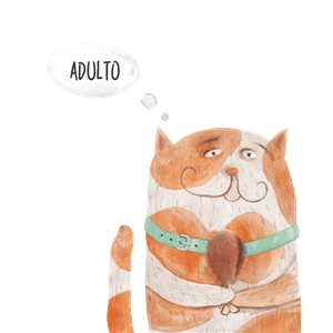 alimento-completo-per-gatti