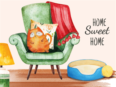 anteprima blog gatto casa