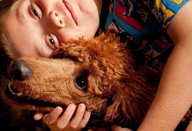 Cane e bambino un rapporto di amicizia che fa crescere entrambi