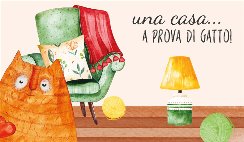 casaGatto NEWSLETTER BLOG