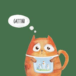 cibo-secco-per-gatti-migliore