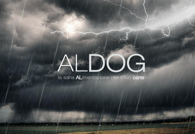 Cosa-fare-se-il-tuo-cane-ha-paura-del-temporale-aldog