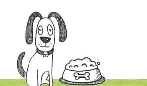 crocchette-cani-20-kg