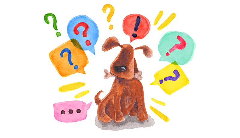 Curiosita sui cani pensate di sapere tutto sul mondo canino PRINCIPALE