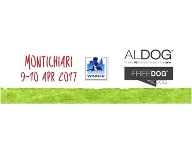 Expo Montichiari 2017
