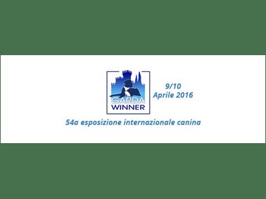 expo montichiari 9-10 aprile 2016