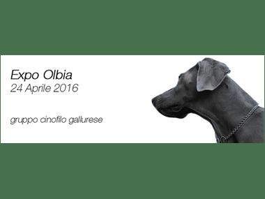 Expo Olbia 24 Aprile 2016